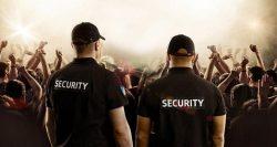 Organizasyon güvenliği hizmeti