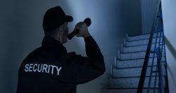 Profesyonel güvenlik